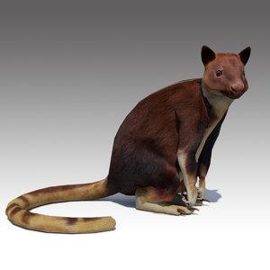 tree-kangaroo animations 3D model