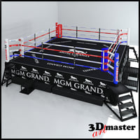 3D hd boxing ring