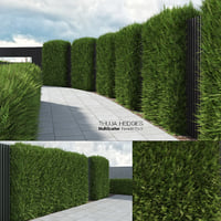 Thuja Hedges (ForestPack+MultiScatter)