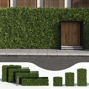 cedar hedge 3D model