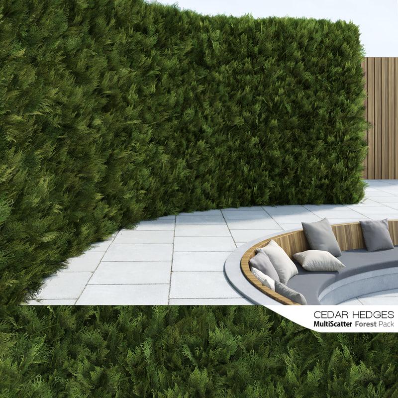 3D scattered cedar hedges forestpack