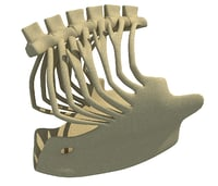bald eagle rib cage 3D model