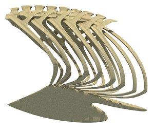 bird rib cage 3D