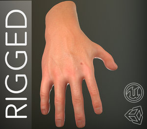 male hand rigged 3D model