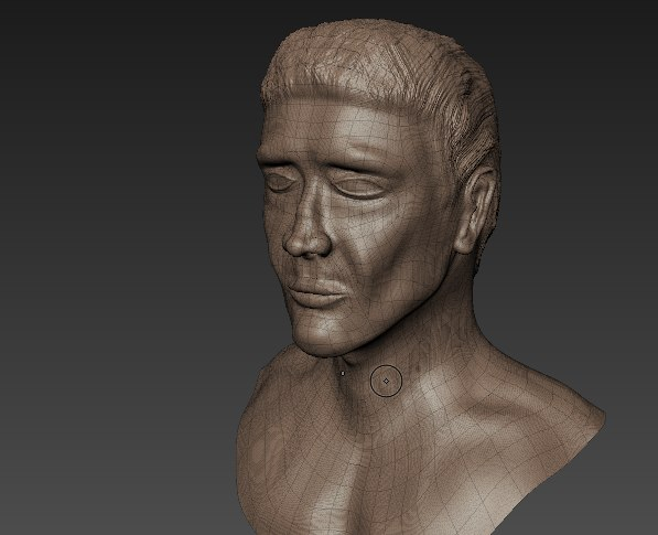 3D madbox anatomy sculpt model