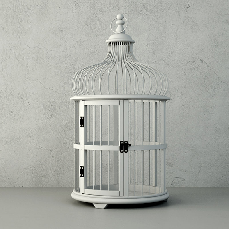 decorative cage belen zara 3D model
