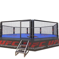 fighting arena ufc 3D model