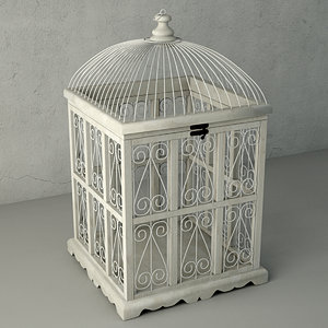 3D decorative cage lars zara