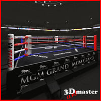 3D model interior boxing arena