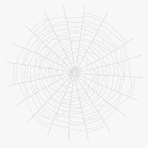 web cob cobweb 3D model
