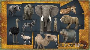 wild africa pack elephant 3D model