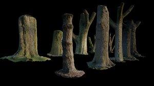 10 tree trunks scans 3D model