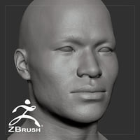 average asian male head 3D