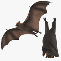 Fruit Bat - 2 Poses - Flying and Hanging