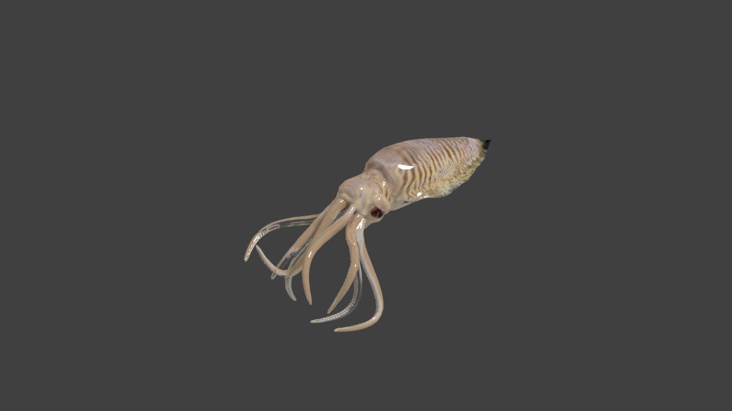 3D cuttlefish model