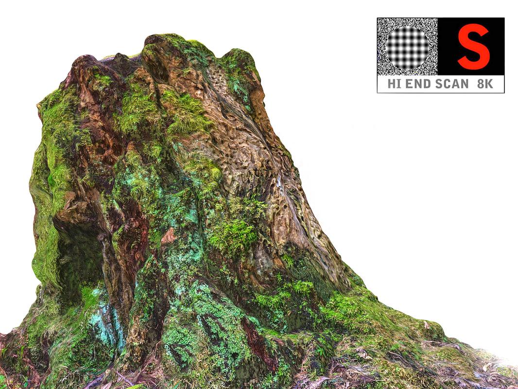 3D trunk rotten 8k