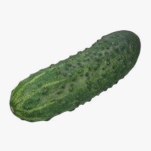 realistic cucumber 3D model
