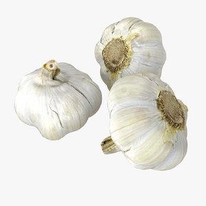 garlics realistic 3D model