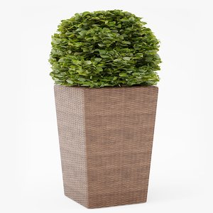 3D model contemporary wicker planter