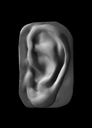 ear polys 3D model