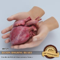 3D hands holding heart
