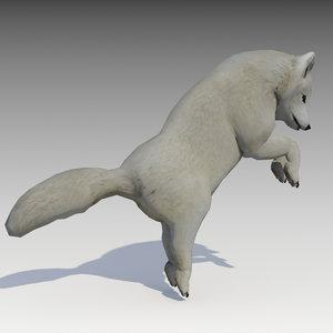 3D artic fox