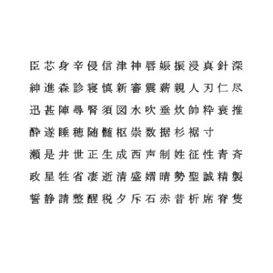 chinese ms pmincho font 3D model