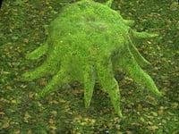 tree stump covered moss 3D model
