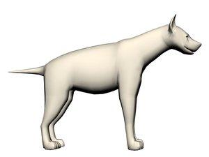 hyena model
