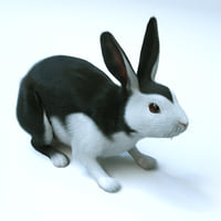 3D vampire bunny