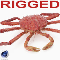3D red king crab rigged