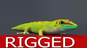gecko rig model