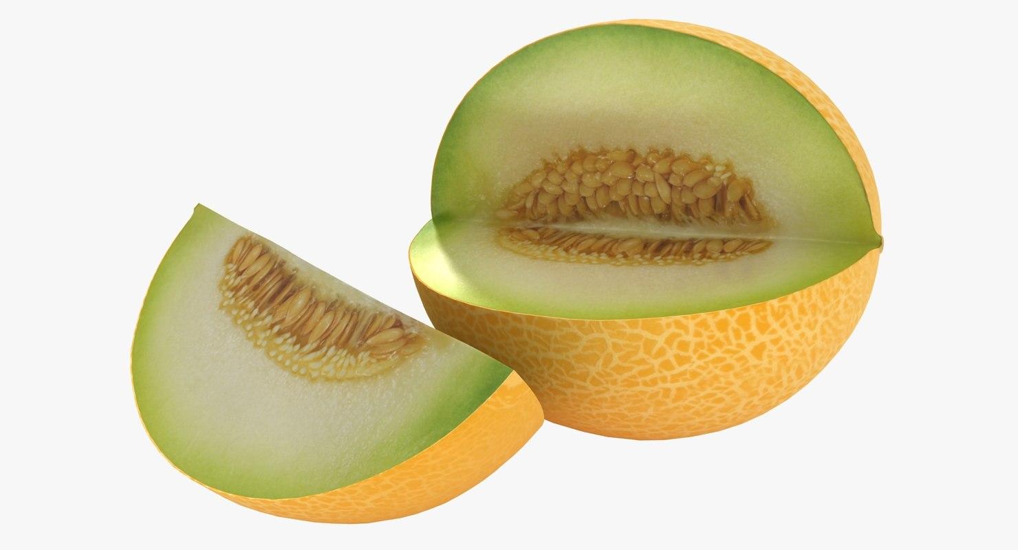 realistic melon 3D