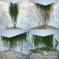 3D model corner ivy