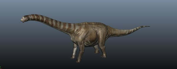 apatosaurus model