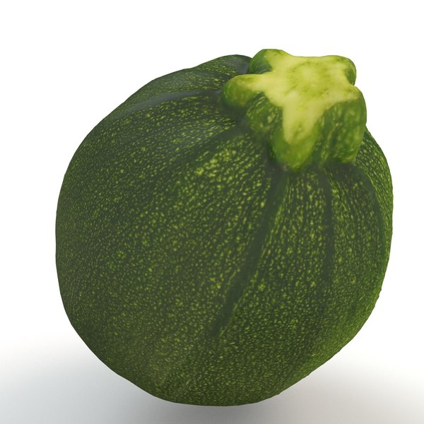 3D zucchini grocery organics model