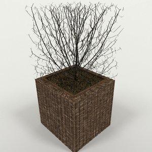 3D model winter planter