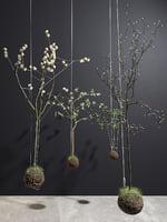 3D model string garden