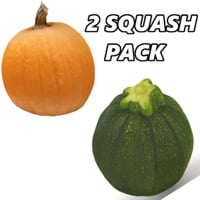pumpkin zucchini fruits 3D model