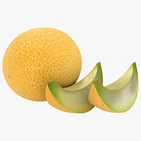realistic melon 02 3D model