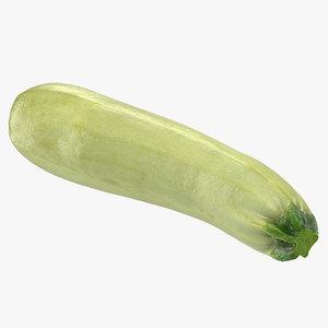 3D summer squash gray zucchini