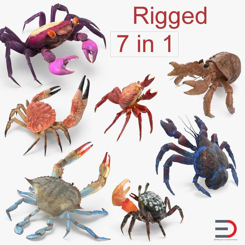3D model rigged crabs 2