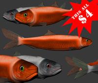 3D fish 2
