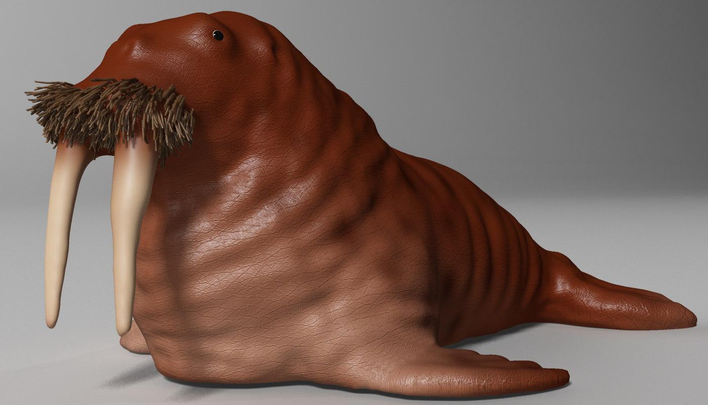 3D model walrus rigged