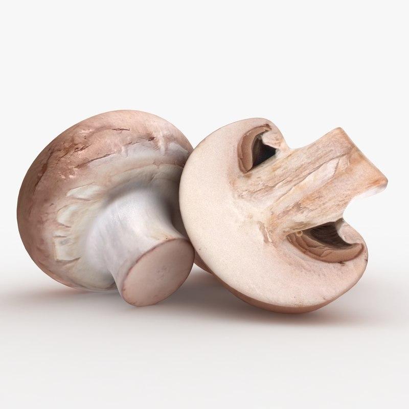 common mushroom 3D