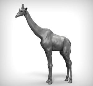 3D giraffe ztl zbrush model