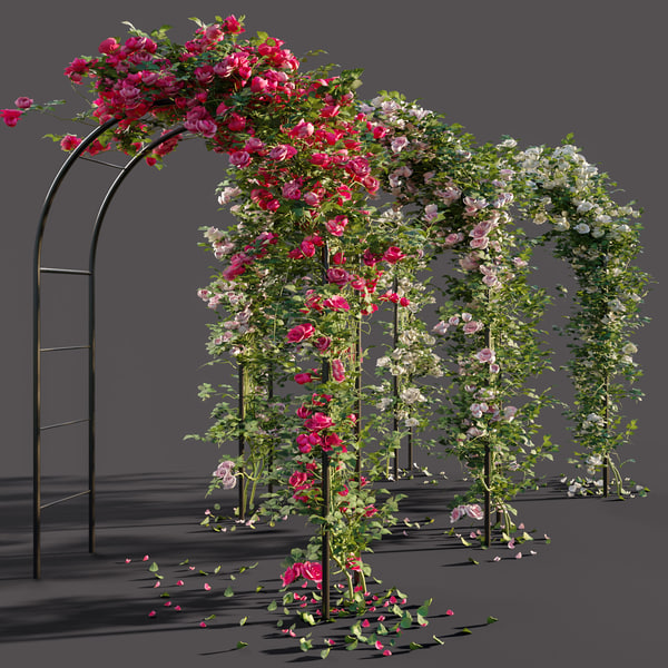 3D roses arch