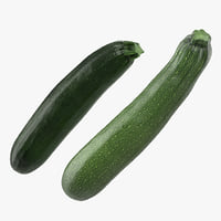 3D zucchini vegetable