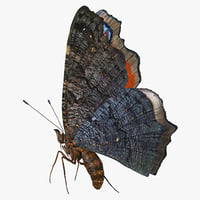 3D model aglais io butterfly flying