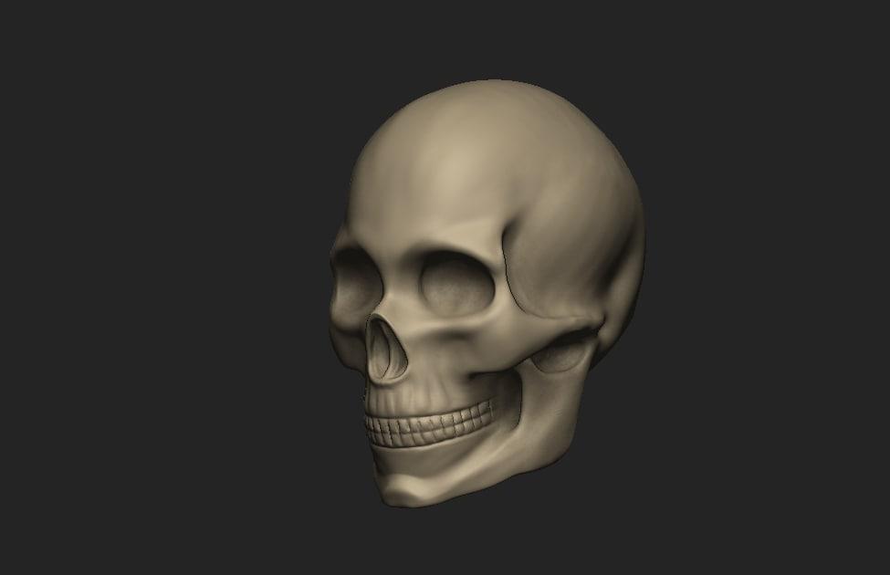 3D female skull